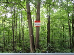 Hunting and Fishing Camp Lots for Lease in Western PA- Blue
