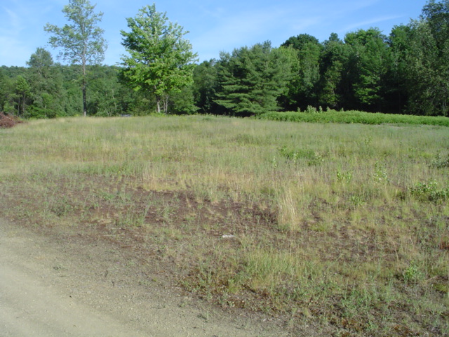 79 Acres Sandy Township Clearfield County Pa West